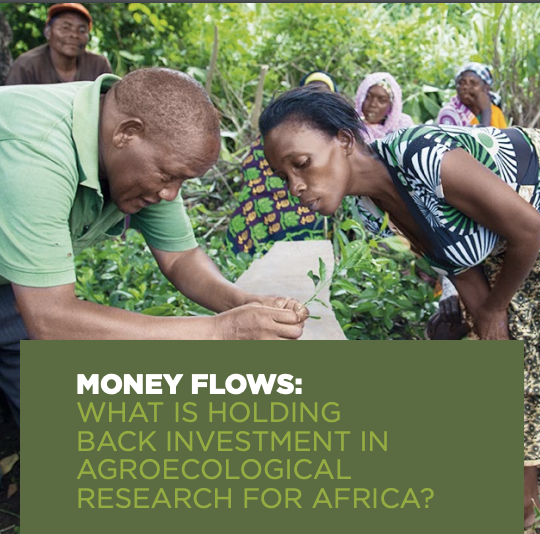 Money Flows: What is Holding Back Investment in Agroecological Research for Africa?