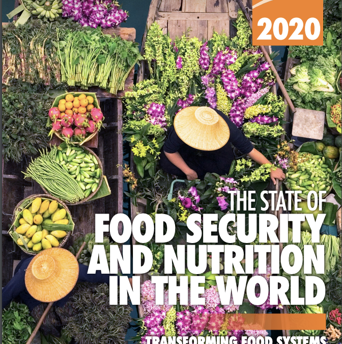 The State of Food Security and Nutrition in the World 2020: Transforming Food Systems for Affordable Healthy Diets