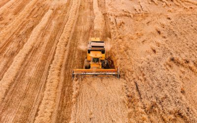Afreximbank provides US$400M to Drive Agricultural Productivity in Africa