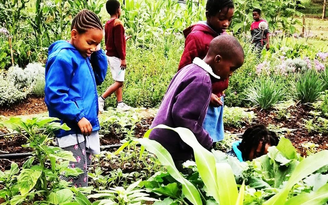 In the Vegetable Garden with Naledi